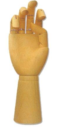 Model dłoni 20 cm H-08