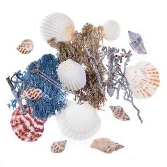DP Craft naturalne elementy morskie mix 75g