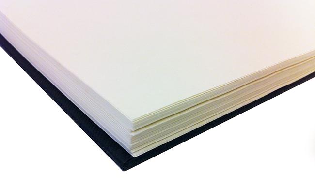 Szkicownik Daler Rowney sketchbook 100g 110ark