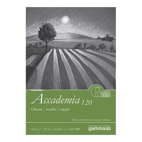 Blok Gamma accademia