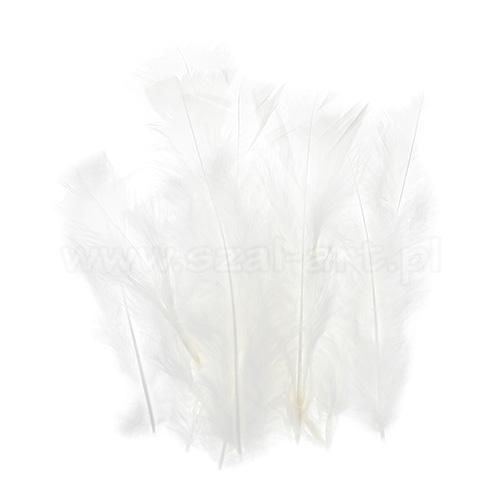 Piórka dekoracyjne dł. ok.12cm białe PIM-00