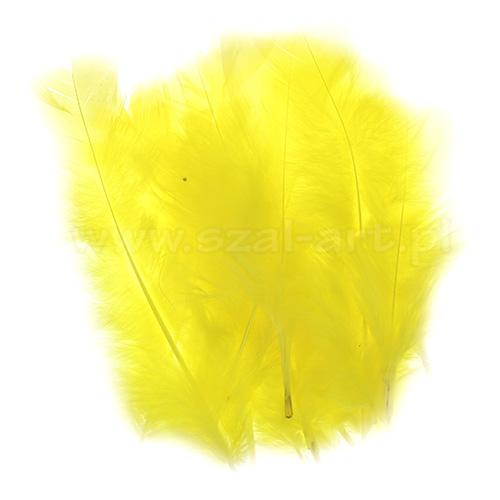 Piórka dekoracyjne dł. ok.12cm żółte PIM-14