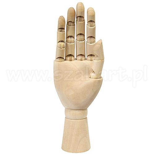 Model dłoni prawej 25cm