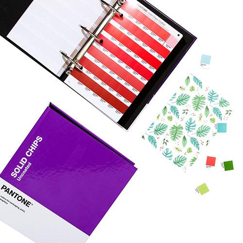 Pantone solid chips wzorniki kolorów