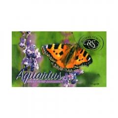 Szmal aquarius zestaw 12 akwareli w kostce Krzysztof Kowalski