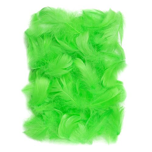 Piórka zielone 5-12cm 10g