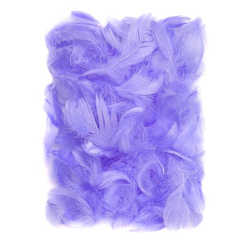 Piórka lilac 5-12cm 10g