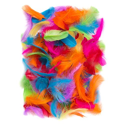 Piórka kolorowe 5-12cm 10g