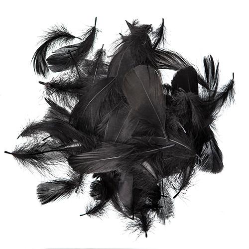 Piórka czarne 5-12cm 10g