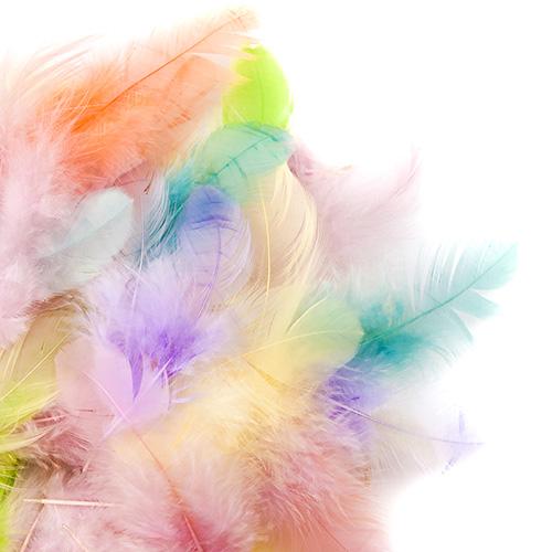 Piórka w kolorach pastelowych 5-12cm 5g